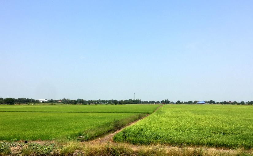 Trip : Suphanburi2019