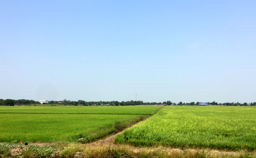 Trip : Suphanburi